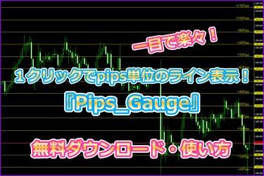 1クリックでpips単位のライン表示!『Pips_Gauge』無料◎